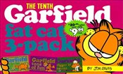 Garfield Fat Cat 3-Pack #10 - Davis, Jim