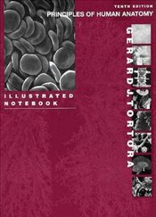 Principles of Human Anatomy 10e : Illustrated Notebook - Tortora, Gerard J.