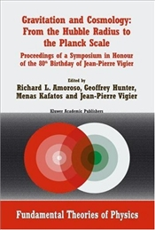 Gravitation and Cosmology 1E : From the Hubble Radius to the Planck Scale - Amoroso, Richard L.
