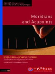 Meridians and Acupoints  - Bing, Zhu