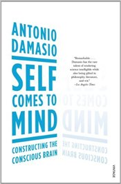 Self Comes to Mind : Constructing the Conscious Brain - Damasio, Antonio R.