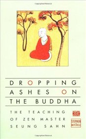 Dropping Ashes on the Buddha - Mitchell, Stephen