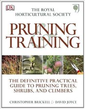 RHS Pruning and Training - BRICKELL, CHRISTOPHER