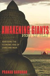 Awakening Giants, Feet of Clay : Assessing the Economic Rise of China and India - Bardhan, Pranab