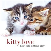 Kitty Love  - Collective,