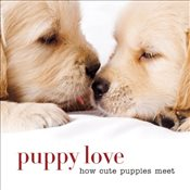 Puppy Love  - Collective,