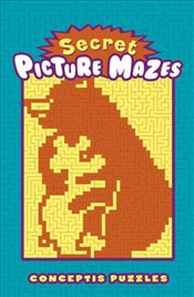 Secret Picture Mazes - Collective,