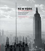 New York : The Story of a Great City - Henry, Sarah M.