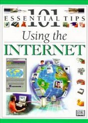 Using The Internet -