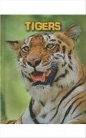 Tigers (Living in the Wild: Big Cats) - Claybourne, Anna