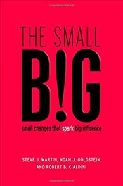 Small Big : Small Changes That Spark Big Influence - Martin, Steve J.