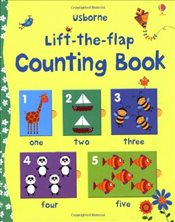 Lift the Flap Counting Book (Usborne Lift-the-Flap-Books) - Brooks, Felicity