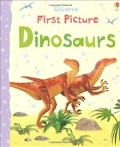 First Picture Dinosaurs (First Picture Books) - Brooks, Felicity