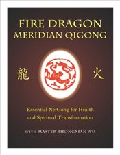 Fire Dragon Meridian Qigong DVD Video -