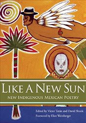 Like A New Sun : New Indigenous Mexican Poetry -