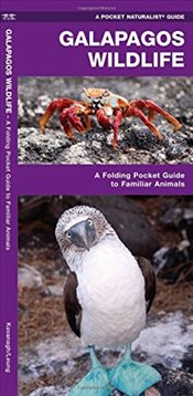Galapagos Wildlife : A Folding Pocket Guide to Familiar Animals   - Kavanagh, James