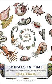 Spirals in Time : The Secret Life and Curious Afterlife of Seashells - Scales, Helen