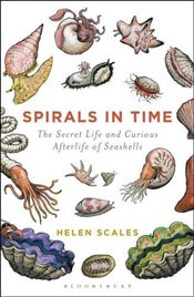 Spirals in Time: The Secret Life and Curious Afterlife of Seashells - Scales, Helen