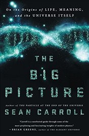 Big Picture : On the Origins of Life, Meaning, and the Universe Itself - Carroll, Sean