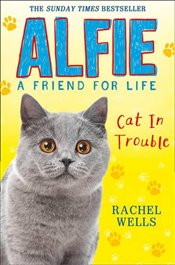 Alfie Cat in Trouble - Wells, Rachel