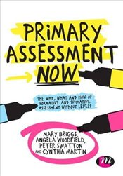 Primary Assessment Now : The Why, What and How of Formative and Summative Assessment Without Levels - Briggs, Mary