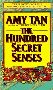 Hundred Secret Senses - Tan, Amy