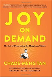 Joy on Demand : The Art of Discovering the Happiness Within - Tan, Chade-Meng