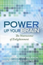 Power Up Your Brain : The Neuroscience of Enlightenment - Villoldo, Alberto