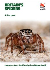 Britains Spiders : A Field Guide   - Bee, Lawrence