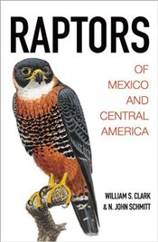 Raptors of Mexico and Central America - Clark, William S.