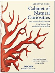 Seba : Cabinet of Natural Curiosities  - Musch, Irmgard