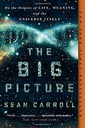 Big Picture: On the Origins of Life, Meaning, and the Universe Itself - Carroll, Sean