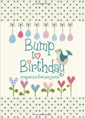 Bump to Birthday, Pregnancy & First Year Baby Journal : an award-winning journal / diary to help you - Stephens, Helen
