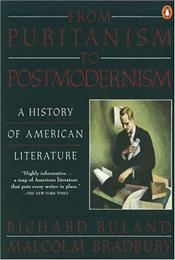 From Puritanism to Postmodernism : History of American Literature  - Bradbury, Malcolm