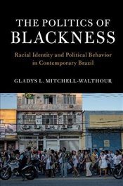 Politics of Blackness : Racial Identity and Political Behavior in Contemporary Brazil - Mitchell-Walthour, Gladys