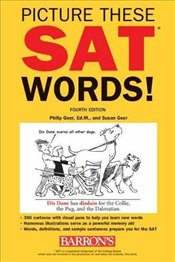 Picture These SAT Words : All the Vocabulary You Need to Succeed on the SAT 4e -