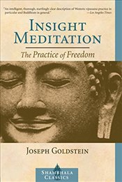 Insight Meditation : The Practice of Freedom - Goldstein, Joseph