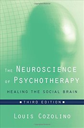 Neuroscience of Psychotherapy : Healing the Social Brain - Cozolino, Louis