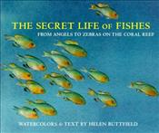 Secret Life of Fishes : From Angels to Zebras on the Coral Reef - BUTTFIELD, HELEN