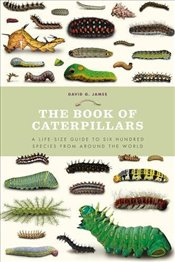 Book of Caterpillars: A life-size guide to six hundred species from around the world - James, David G.