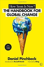 How Soon is Now: From Personal Initiation to Global Transformation - Pinchbeck, Daniel