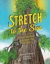 Stretch To The Sun - Pearson, Carrie