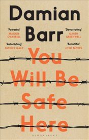 You Will Be Safe Here - Barr, Damian
