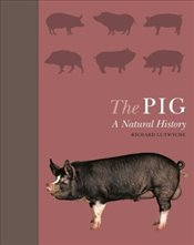 Pig : A Natural History - Lutwyche, Richard