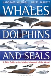 Whales, Dolphins and Seals : A Field Guide to the Marine Mammals of the World - Shirihai, Hadoram