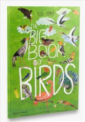 Big Book of Birds - Zommer, Yuval