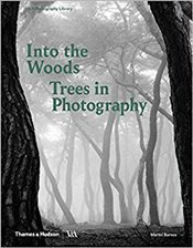 Into The Woods : Trees And Photography - Barnes, Martin