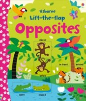 Lift the Flap Opposites - Brooks, Felicity