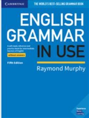 English Grammar in Use Book without Answers: A Reference and Practice Book for Intermediate Learners - Murphy, Raymond