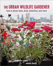 Urban Wildlife Gardener : How to Attract Bees Birds Butterflies and More - Hardy, Emma